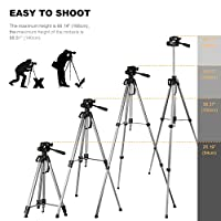 K&F Concept Travel Tripod 66 Inch Aluminum Alloy Camera Tripods with Head Quick Release Plate for Digital Canon Nikon Sony Tamorn DV from Shenzhen Zhuoer Photograph