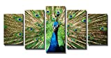 Wieco Art the Peacock 5 Panels Modern Giclee Canvas Prints Artwork Animals Wall Art for Home Decorations Picture