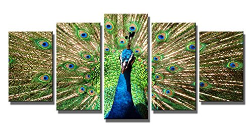 Wieco Art The Peacock 5 Piece Modern Stretched and Framed Gi