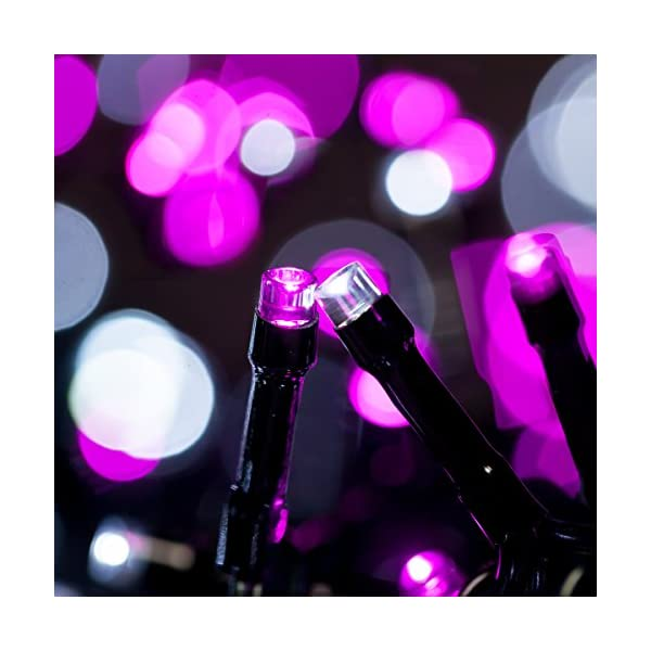 Catena Luminosa WISD Cavo Verde Scuro Stringa Luci Con 8 Modalità, Funzione Di Memoria, Bassa Tensione, Luci Natalizie Bicolori 13M 200 LED Luci Per Casa/Natale/Giardino/Feste (Rosa + Bianco) 2 spesavip
