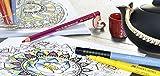 Faber Castell FC167137 Wallet Pitt Pen Nibs Art