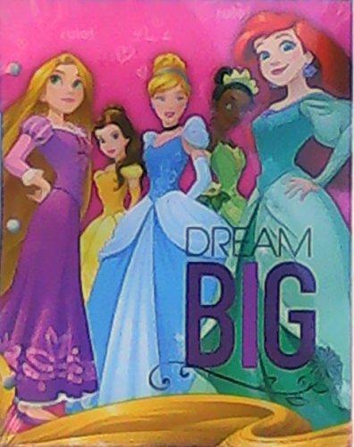 Disney Princess Dream Big File Folders