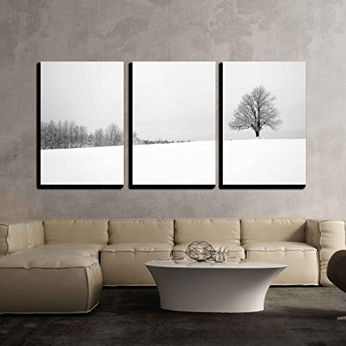 "Wall26 - 3 Piece Canvas Wall Art - Winter with Snow and a Lonely Tree in a Field - Modern Home Decor Stretched and Framed Ready to Hang - 16""x24\""x3 Panels"