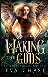 Waking the Gods (Their Dark Valkyrie)