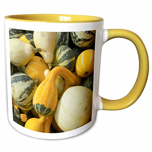 3dRose Danita Delimont - Farms - Massachusetts, Natick, Lookout Farm, gourds - US22 LEN0234 - Lisa S. Engelbrecht - 11oz Two-Tone Yellow Mug - Natick Outlets