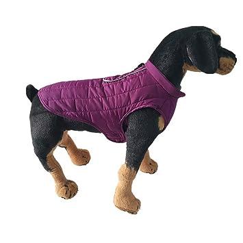 bluel ucon Mascotas Chaqueta Perros de Cachorros de Invierno cálidos de Agua Densidad Abrigos Puppy Ropa