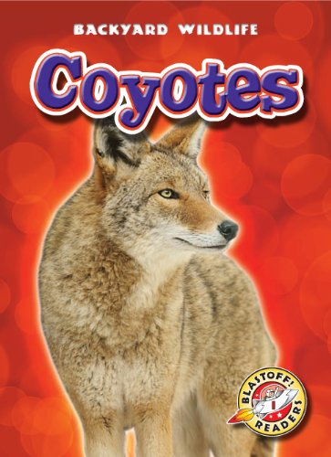 Coyotes (Blastoff! Readers: Backyard Wildlife) (Blastoff Readers. Level 1) ebook