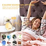 Cadrim Wake up Light, Natural Sunrise Simulation