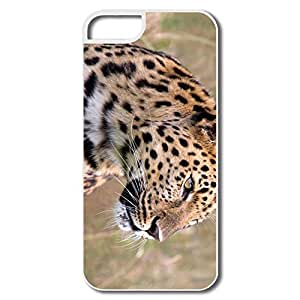IPhone 5/5S Cases, Male Amur Leopard Wildlife Heritage UK Cases For IPhone 5 5S - White Hard Plastic
