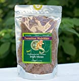 Fresh Whole Leaf Irish Moss (Raw, Wildcrafted) 16 oz