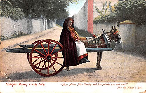 Irish Life, Miss Aileen Mac Carthy and her private ass and cart Ireland Postcard