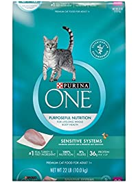 Amazon Com Food Cats Pet Supplies Wet Dry