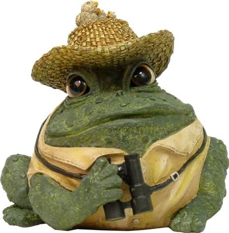 Homestyles Toad Hollow #94037 Figurine Bird Watcher with Naturalist Hat, Vest & Binoculars Character Garden Statue Small 5.5