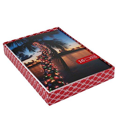 Palm Tree Holiday Card - Image Arts Christmas Boxed Cards, Christmas Light Palm Tree (16 Cards with Envelopes)