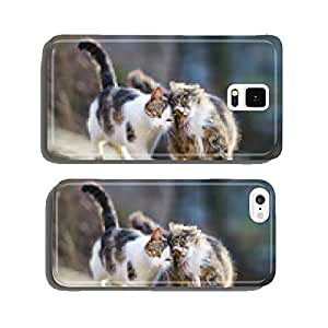 Two lovely cats on spring cell phone cover case Samsung S5