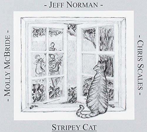 (Stripey Cat)