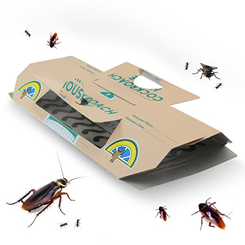 Buyalot 10 PCS Cockroach Traps for Home Pest Control Kill Roaches Ants Spiders and Other Bugs Insects ECO Non-toxic