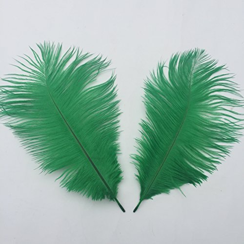 UPC 600089324730, Shekyeon Dark Green 10-12inch 25-30cm Ostrich Feather Home Decoration DIY Craft Pack of 10