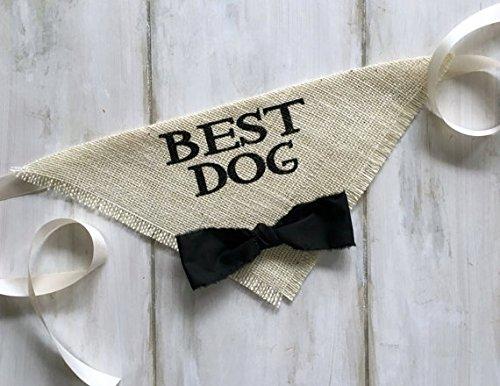 Pet Attire Bandana - Best Dog Wedding Pet Bandana with Black Bowtie Size X-Large