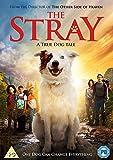The Stray (DVD) [2018]