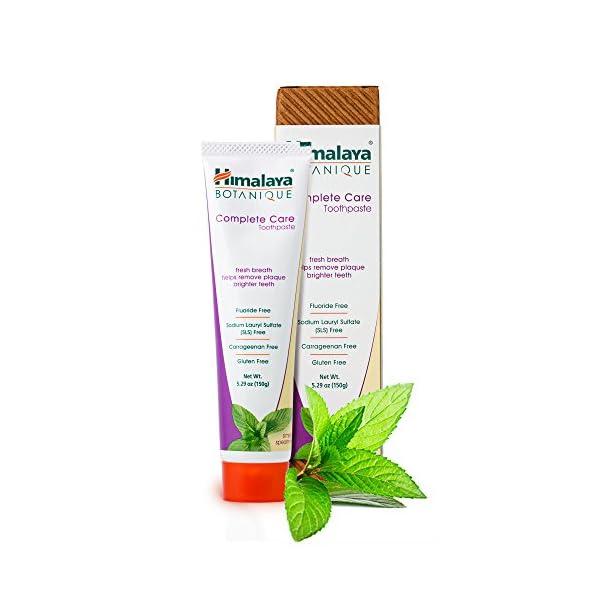 Himalaya Botanique Toothpaste – Dentifrice Naturel Sans Fluorure, SLS, Gluten et Carraghénane – Enlève la Plaque et la…