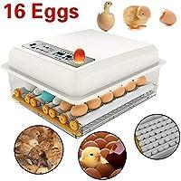 Bluelliant Incubadoras de Huevos automaticas 16 Eggs Incubator