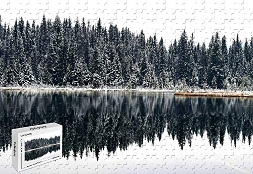 300 Piece Jigsaw Puzzle - Lost Lake Bc