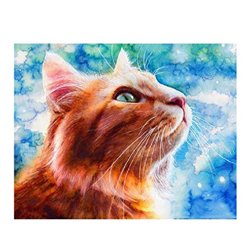 Transer 5D Embroidery Paintings Rhinestone Pasted