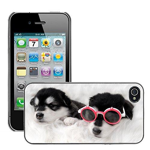 Premio Sottile Slim Cassa Custodia Case Cover Shell // V00002145 Chien // Apple iPhone 4 4S 4G