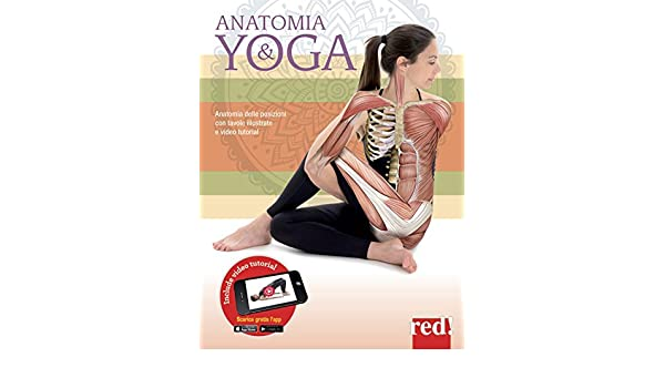 Anatomia & yoga: Mireia Patiño Coll: 9788857308340: Amazon ...