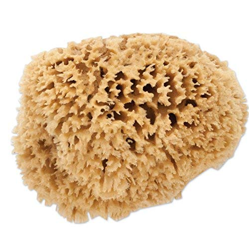 Flavor In Multi Style Car Auto Washing Sponge Block Honeycomb Car Coral Sponge Fragrant