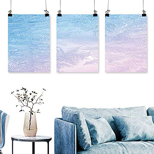 SCOCICI1588 3-Piece Modern Beautiful Closeup Winter Window Pane Coated Shiny Frost Patterns Print On Canvas No Frame 16 INCH X 40 INCH X 3PCS - Gucci Coated Canvas