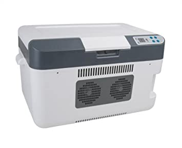 Kühlschrank Im Auto Lagern : Llx l halbleiter kühlschrank hause gefrorenen dual core kühlung