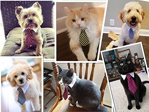 Kailian Cat Tie Adjustable Twill Cotton Tie fit for Small Dogs Cats Puppy