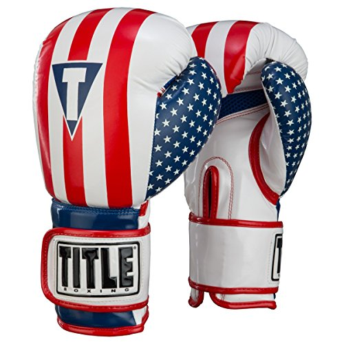 (Title Boxing Infused Foam Combat USA Training Gloves, Regular)