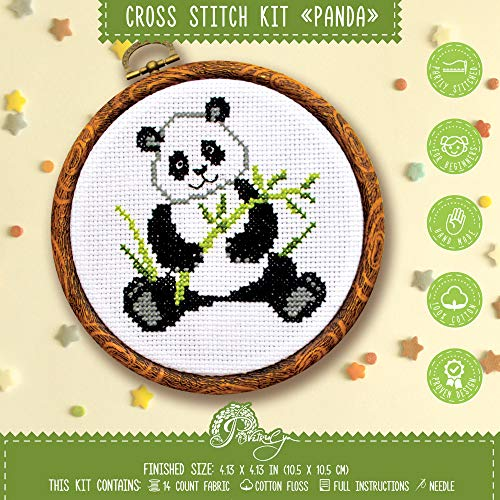 Beginners Cross Stitch Kit with Pattern