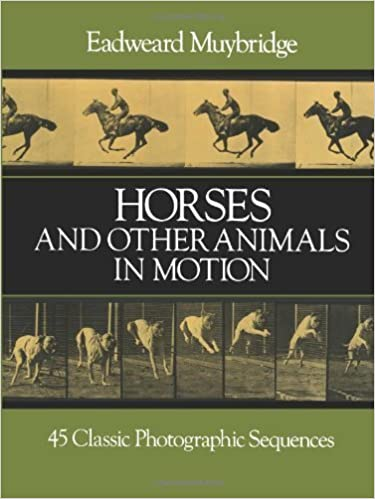 Book Horses and Other Animals in Motion: 45 Classic Photographic Sequences (Dover Anatomy for Artists) by Muybridge, Eadweard (2000)