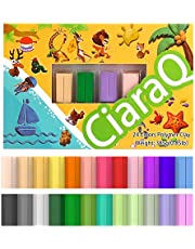 Super Valuable 24 Colors Small Block Polymer Clay starter kit, Oven Bake Clay, CPSC Conformed Non-Toxic Molding DIY Clay, Great for Kids, Beginners.