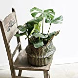 RISEON Black Seagrass Belly Basket, Plant Holder Basket Pot Collapsible Panier Storage Nursery Laundry Tote Bag with Handles (L(36x32cm))