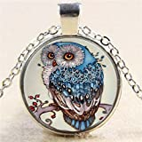 paweena Vintage Steampunk Owl Photo Cabochon Glass Pendant Silver Chain Necklace Jewelry