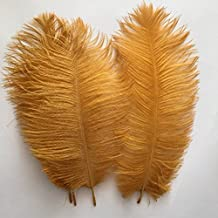 Generic 10-12inch 25-30cm Ostrich Feather Home Decoration DIY Craft (Gold) by Generic