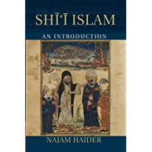 Shi'i Islam: An Introduction (Introduction to Religion)