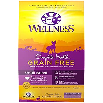 Wellness Complete Health Natural Grain Free Dry Small Breed Dog Food, Turkey, Chicken & Salmon, 11-Pound Bag