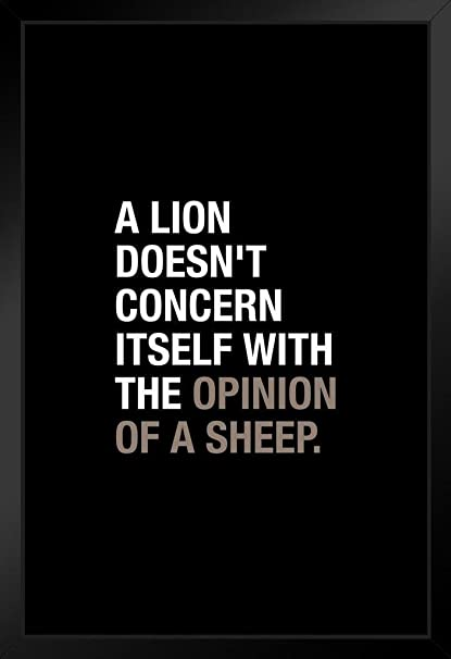 Amazoncom A Lion Doesnt Concern Itself With The Opinion Of A Sheep