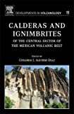Calderas and Ignimbrites of the Central Sector of the Mexican Volcanic Belt, Aguirre-Diaz, Gerardo J., 0444529470