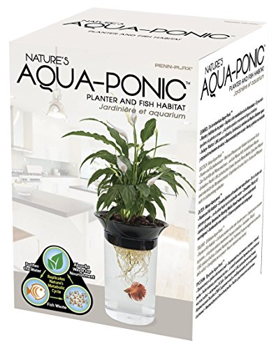 Penn-Plax-Aquaponic-Betta-Fish-Tank-Promotes-Healthy-Environment-for-Plants-and-Fish