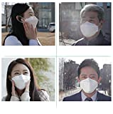 (10 Pack) Breathe Safely Mouth Protection/Face