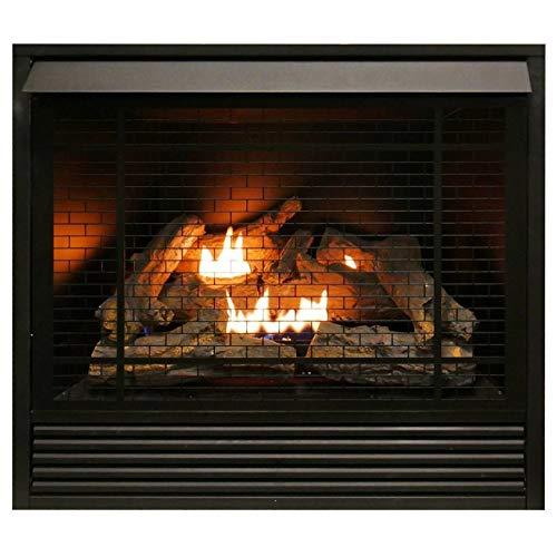 Duluth Forge Dual Fuel Ventless Fireplace Insert - 32,000 BTU, Remote Control FDI32R FDI32R Dual Fuel Ventless Fireplace Insert, Remote Control, 32,000 BTU (Gas Fireplace Insert Vent Free)