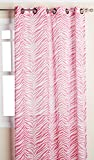 VCNY Ombre Zebra Panel, 54 by 84-Inch, Hot Pink Review