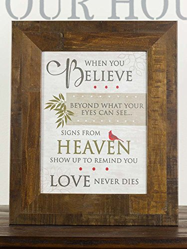 NEW When You Believe Beyond Miracles Heaven Sympathy Red Cardinal Religious Framed Art Decor 13x16